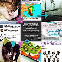 p3652011_Week34_web.jpg