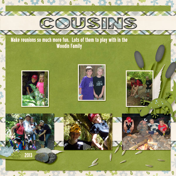 7-Andrew_cousins_2013_small