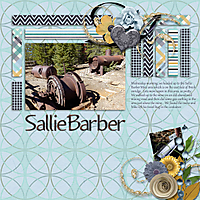 sallie-barber-pg2-sb-temp.jpg