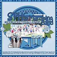 icebucketWEB.jpg