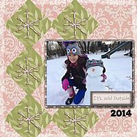 2014-02-25-Nsnow.jpg