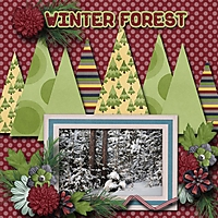 Winter_forest.jpg