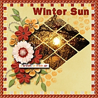 Winter_sun.jpg