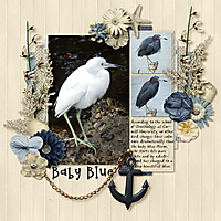 baby-blues---heron-3s-mix.jpg