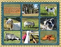 goats_600_x_464_.jpg
