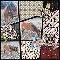 grannynky_the_pony_Custom_.jpg