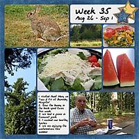 2014_Week35.jpg
