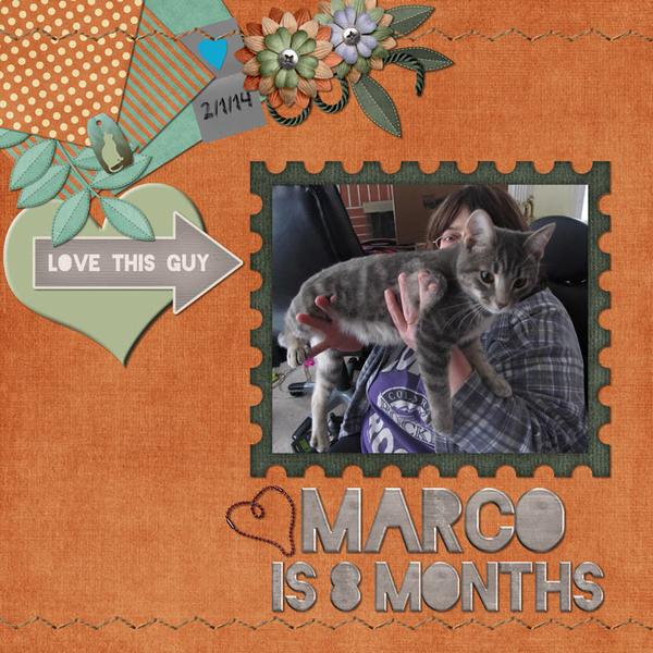 Marco is 8 months