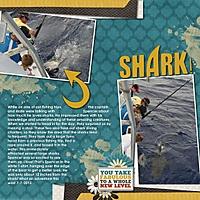 Shark_.jpg