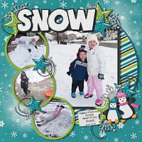 Snow-2011.jpg