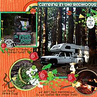 camping_redwoods_copy.jpg