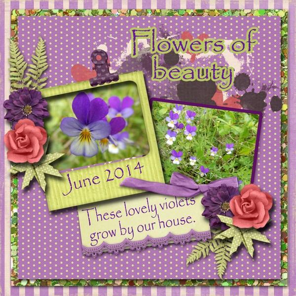 Flowers_of_beauty