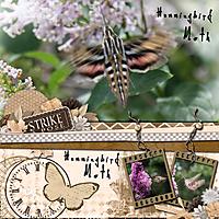 The-Hummingbird-Moth-Strike.jpg