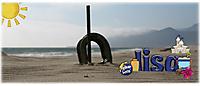 beachsiggie.jpg