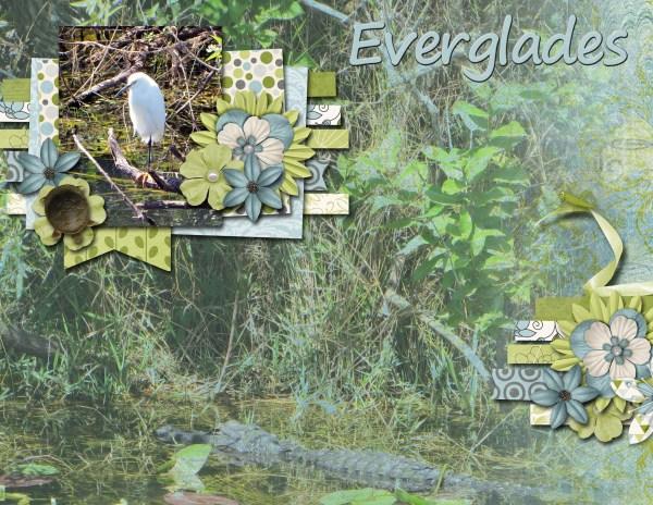 Everglades pg 1