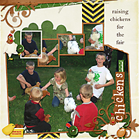 6-Marcus_chickens_2013_small.jpg