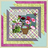 Apr-Template1_Spring.jpg
