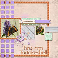 Fire-rim_Tortoiseshell_copy.jpg