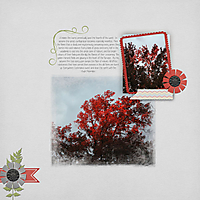Red-Sky-web.jpg