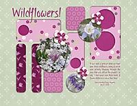 Wildflowers_600_x_464_.jpg