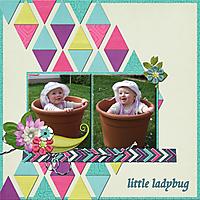 little_ladybug_bearbeitet-1.jpg