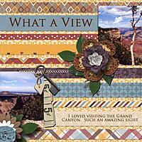 what_a_view_lr.jpg
