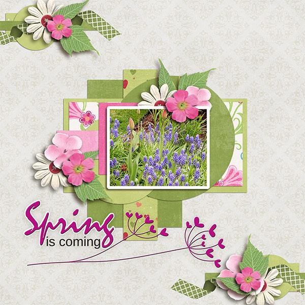 SpringIsComming