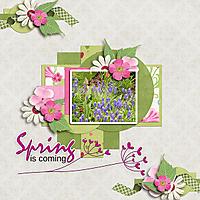 SpringIsComming.jpg