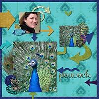 peacock_450x450_.jpg