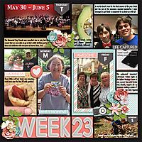 P52-Week-23-2016WEB.jpg
