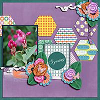 Spring-Bloom.jpg