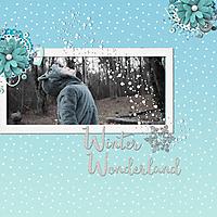 rsz_winter_wonderland.jpg