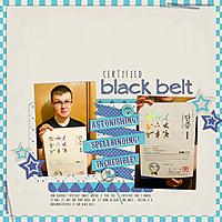 10-black-belt-msg0804.jpg