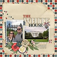 2-the-white-house-0809msg.jpg