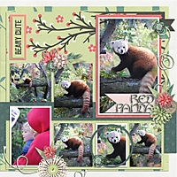 Red_PandaRight_500x500_.jpg