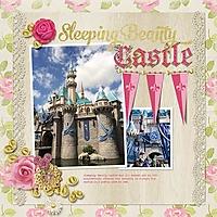 sleeping-beauty-castle-1114msg.jpg