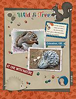 Wild-_-Free.jpg