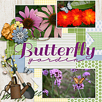 butterfly-garden1WEB.jpg