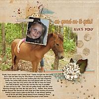 Ava_s_pony_Custom_.jpg