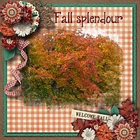 Fall_splendour.jpg