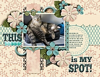 spot_600_x_464_.jpg