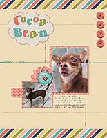 Cocoa-Bean.jpg