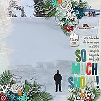 so_much_snow.jpg