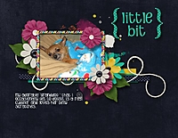 littlebit_600_x_464_.jpg