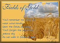 ATC-2015-30-Fields-of-Gold.jpg