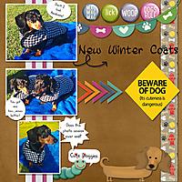 new_coats_copy.jpg