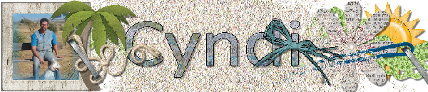 http://gallery.gingerscraps.net/data/867/-C_SiggyByTheSea-6x129.png