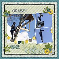 Crazy_GS.jpg