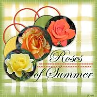 Roses_of_Summer_2010.jpg