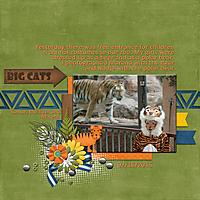 big_cats_bearbeitet-1.jpg